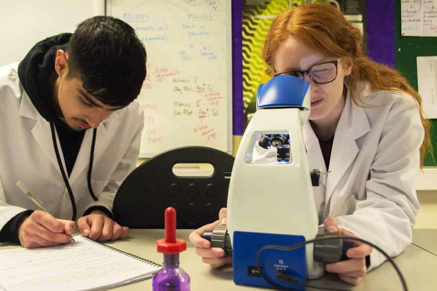 Students conducting an experiment using a microscope