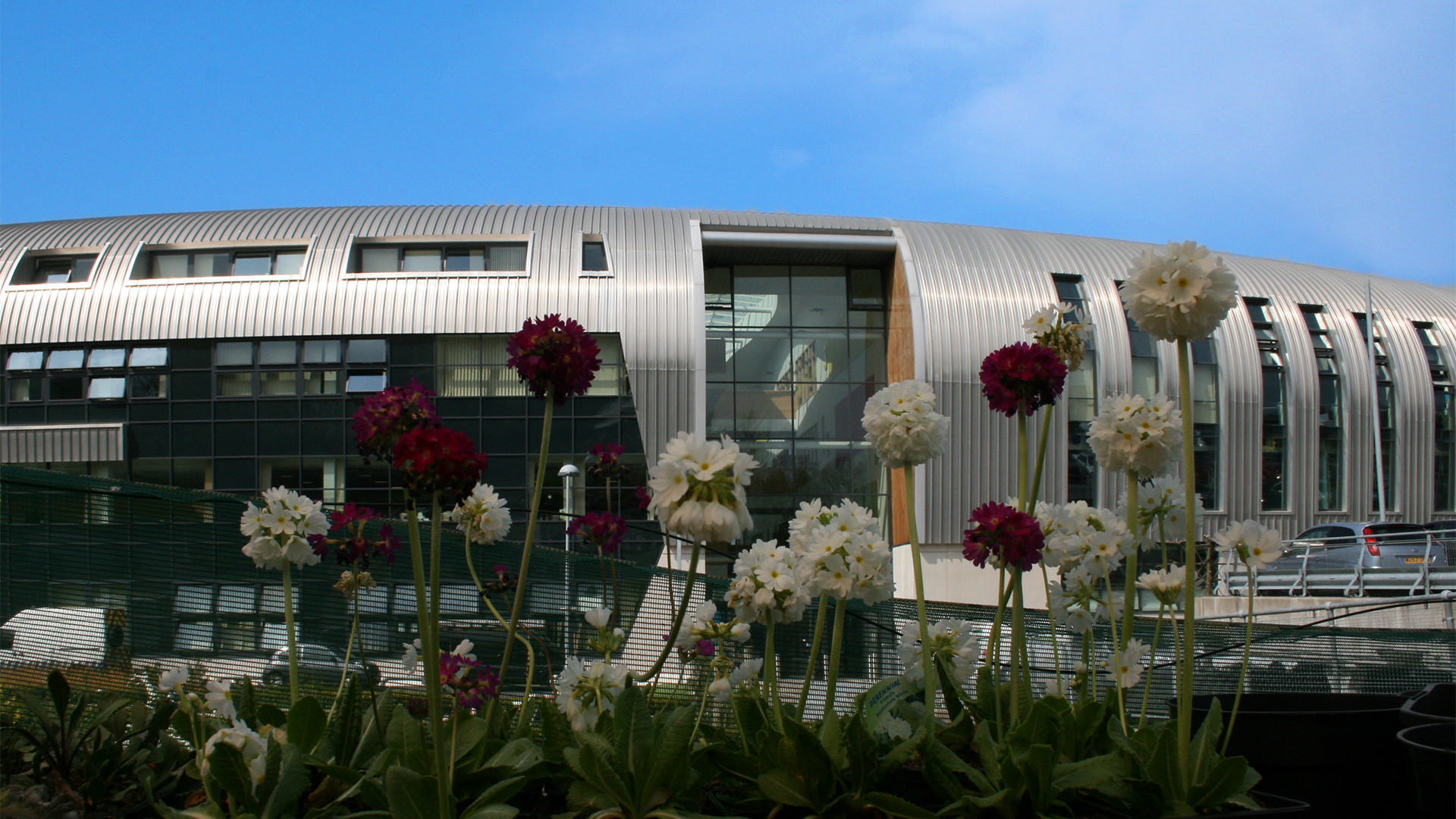 Exterior of SBSA campus with flowers